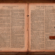 Why Don't We Read the Bible More?