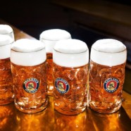 Octoberfest and the Art and Science of Beer
