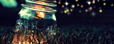The Mystery of the Firefly